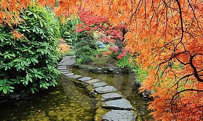 A escolha de um bom caminho leva a belas paisagens.