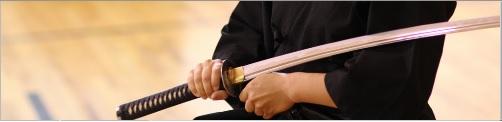 A Apropriação do Seitei Iaido - Clique para Ler